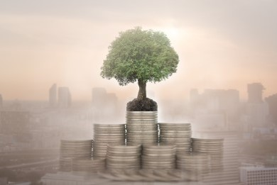 Portfolio and Wealth Management Strategies and Advice